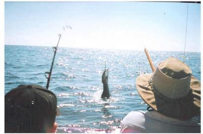 Dampier Billfish Shoot-Out 2005