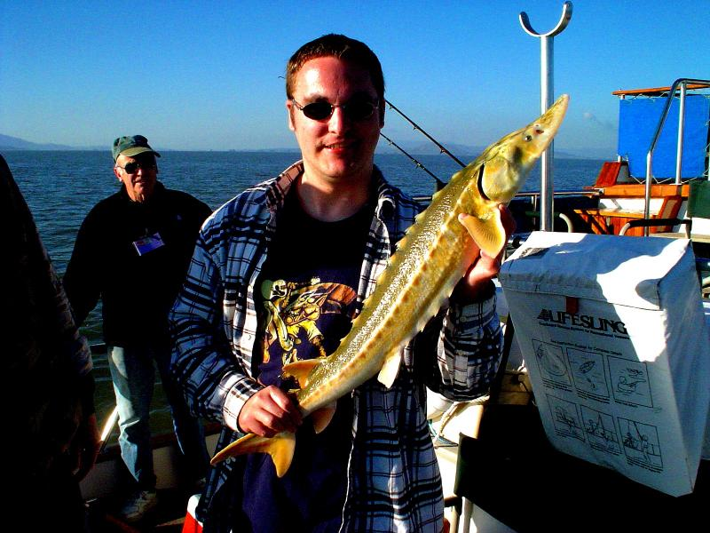 Sturgeon, Green - Michael R. Hackett of Napa, California with a Green Sturgeon that was caught and released 