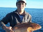 Fishing Port Hedland Fishing Photos  Coral Trout  In the Esky Frank!!! Frankie Zhang nails a lovely coral trout on the troll in abt 9 meters of water off Port Hedland. Took a Halco Crazy Deep, which must have been to tempting to resist. Photo submitted by Matt Evans, Port Hedland.  Bob Fisher's SportfishWorld &copy