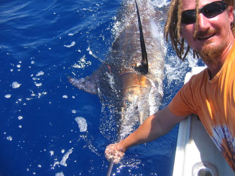 Marlin, Blue - A 100kg Blue Marlin released off Exmouth. Ian Huxter  -SportfishWorld &copy Copyright 2003 All rights reserved